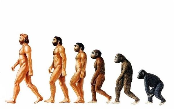 ラングラー40年超、進化の歴史!!!